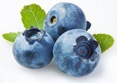 Blueberry Bisa Cegah Kanker dan Diabetes?