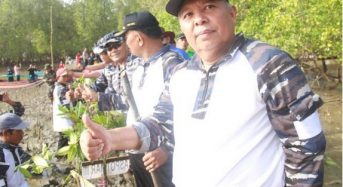 BUPATI DAN TNI AL TANAM DUA RIBU BIBIT MANGROVE